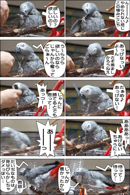 ノンフィクション劇場-No.62
