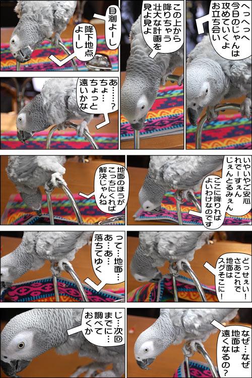 ノンフィクション劇場-No.63