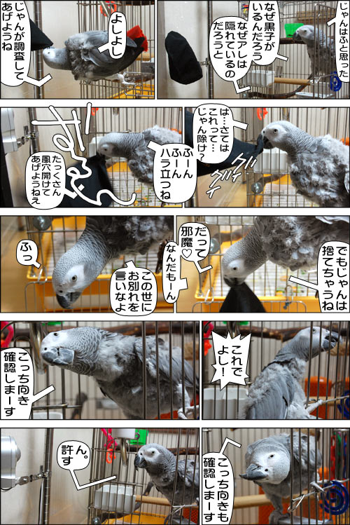 ノンフィクション劇場-No.64