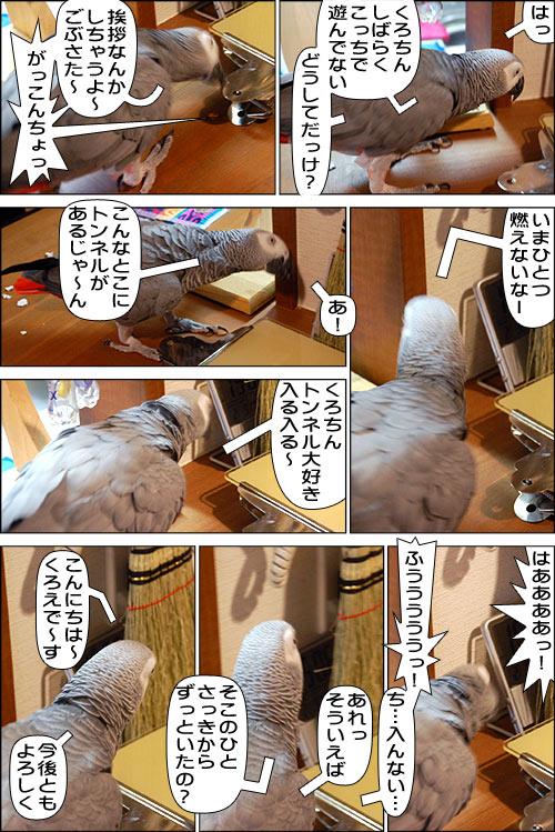 ノンフィクション劇場-No.65