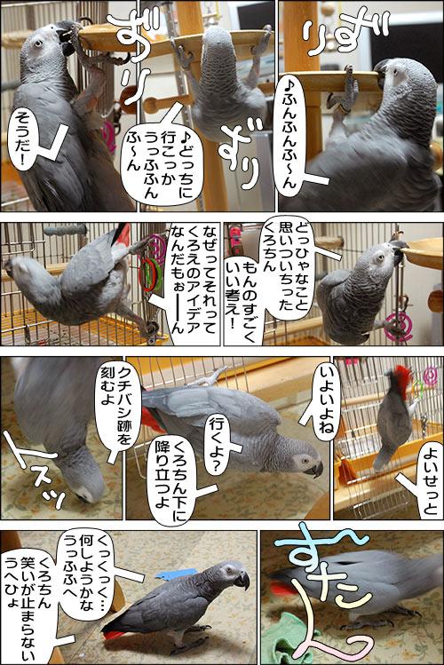 ノンフィクション劇場-No.66