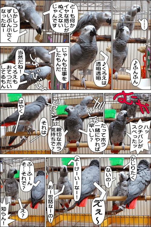 ノンフィクション劇場-No.67-1