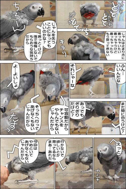 ノンフィクション劇場-No.68