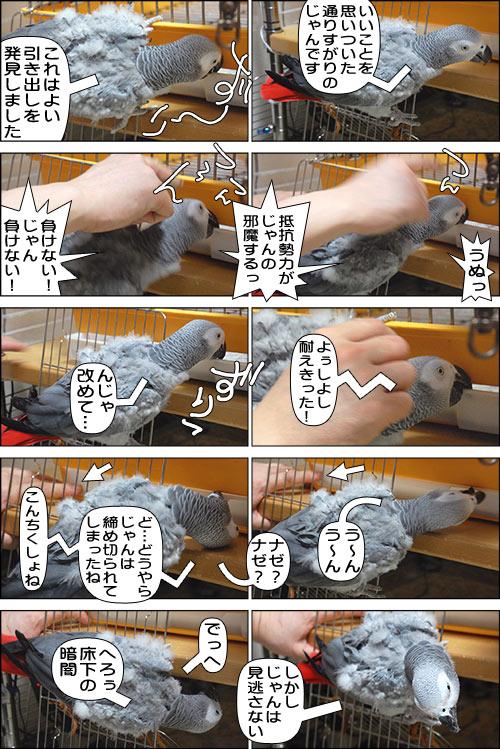 ノンフィクション劇場-No.69