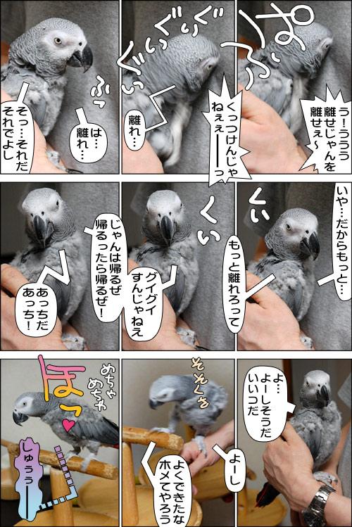 ノンフィクション劇場-No.73