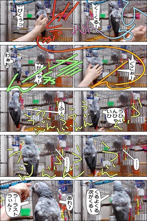 ノンフィクション劇場-No.74