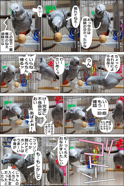ノンフィクション劇場-No.79