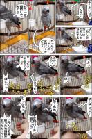 ノンフィクション劇場-No.80-1
