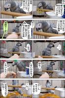 ノンフィクション劇場-No.80-3