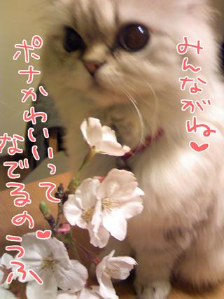 2009_07_19_3.jpg