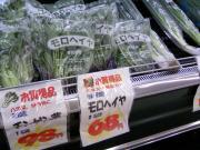 夏野菜が安い!