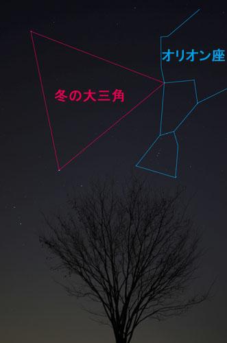 DSC_2170_1.jpg