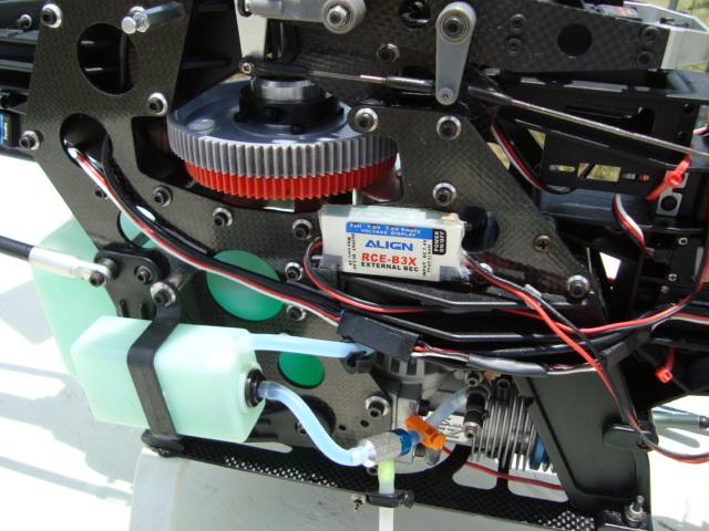 DSC00617.jpg