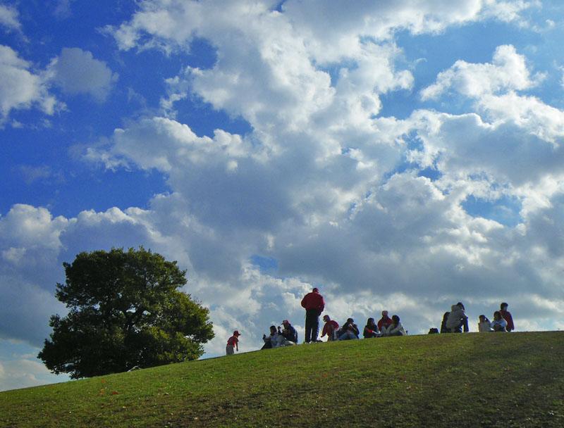 081129今日の榎の丘1
