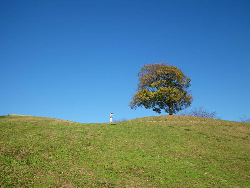 081216榎の丘2