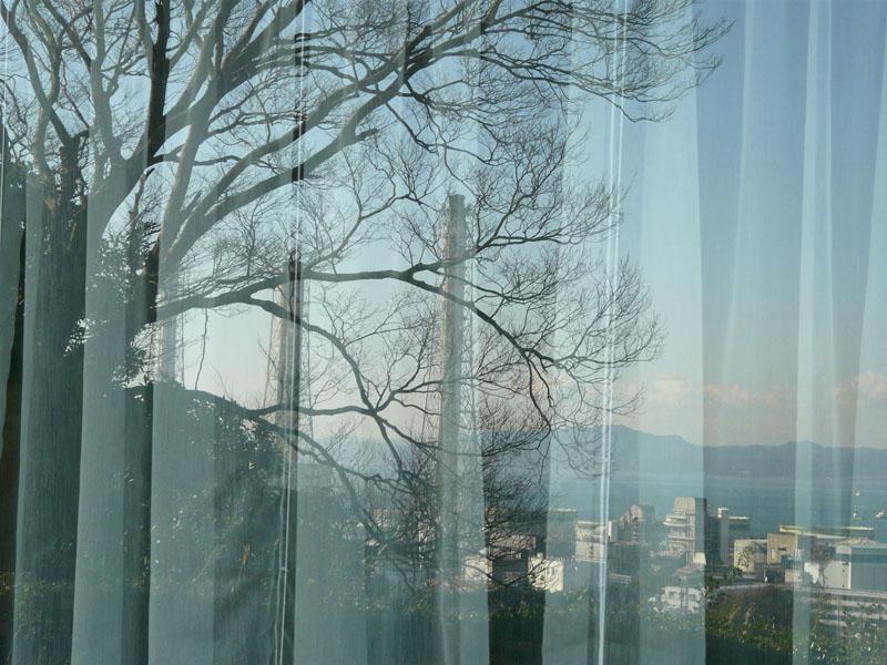 081228風景カーテン2
