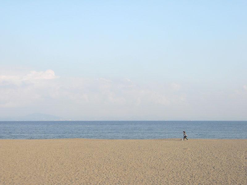 090211三浦海岸1