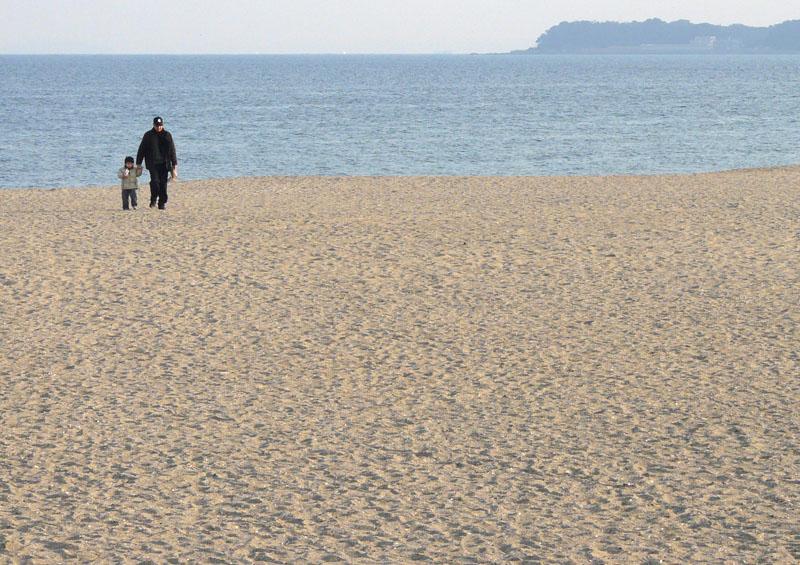 090211三浦海岸3