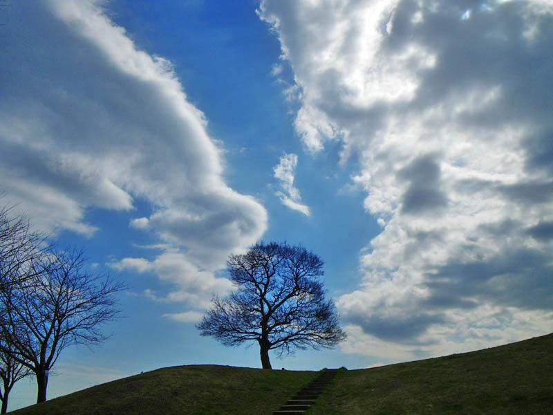 090307今日の榎の丘