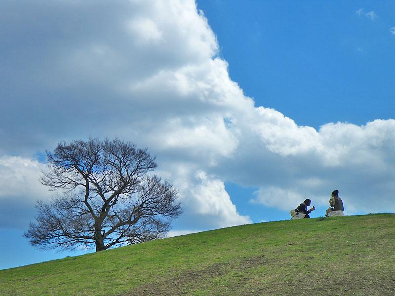 090326今日の雲1