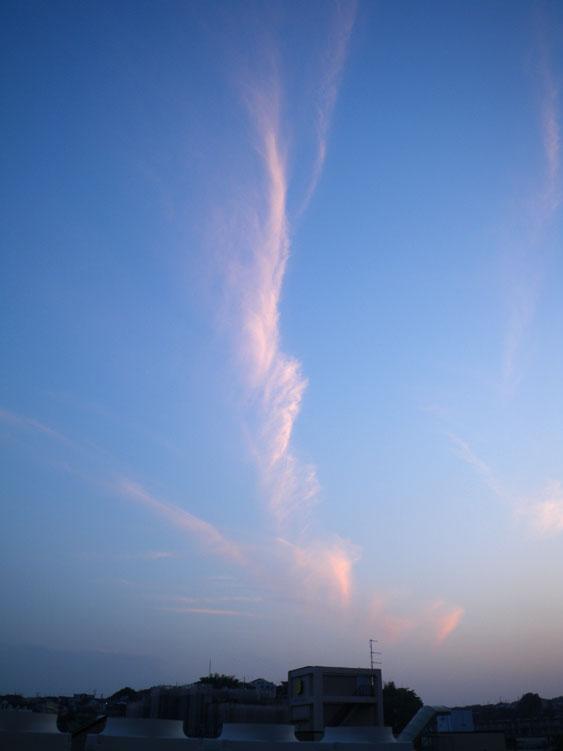 090520今日の夕雲4