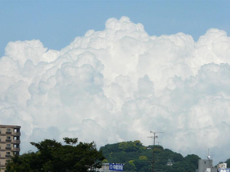 090531夏雲2