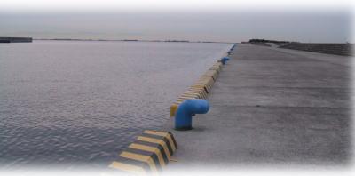 南芦屋浜(護岸側)