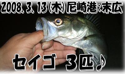 今日の釣果♪(^-^;