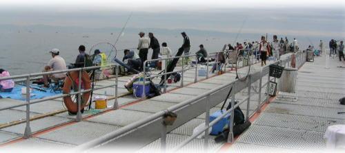 須磨海釣り公園3