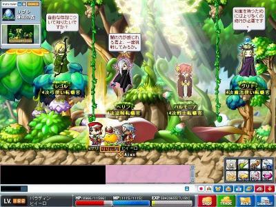 Maple000764.jpg