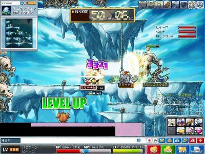 Maple001000.jpg