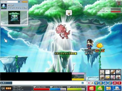 Maple001055.jpg