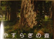 やすらぎの森の本