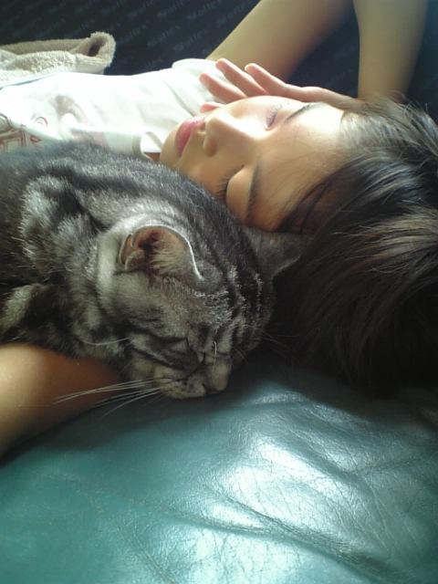 寄り添って眠るチーママとソニー