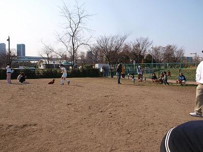 s-2009_0321hime0009.jpg