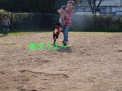 s-2009_0321hime0018.jpg