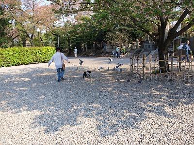 s-2009_0414hime0034.jpg