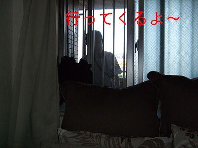 s-2009_0828hime0009.jpg