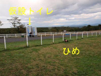 s-2009_1012hime0109.jpg