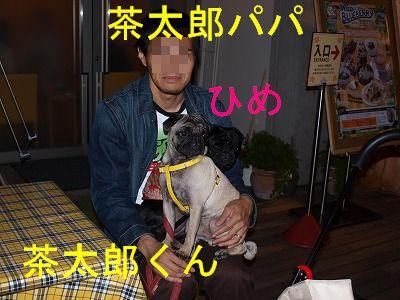 s-2009_1031hime0042.jpg