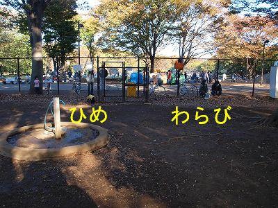 s-2009_1103hime0072.jpg