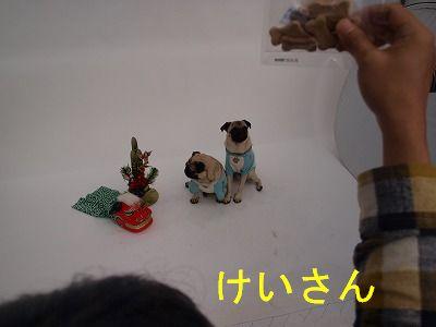 s-2009_11150006.jpg
