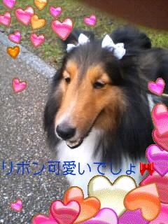 080715ジャスミンちゃん♪2001