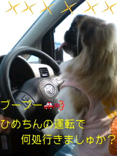 080722田子浦港で黄昏るひめちん♪001