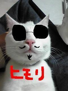 himori_convert_20090227203244.jpg