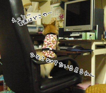 2008-09-20-08.jpg
