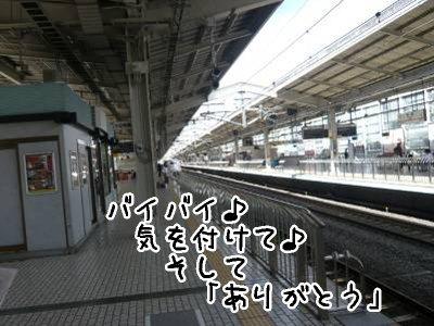 2008-09-27-08.jpg
