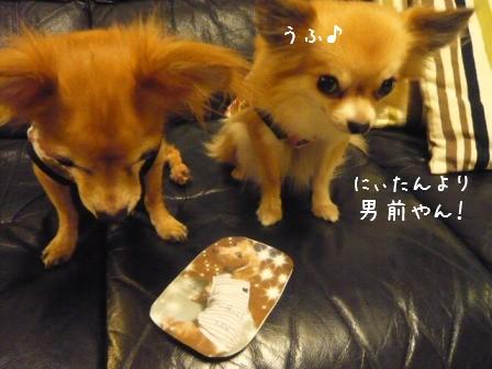 2008-10-+20-04.jpg