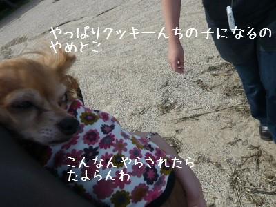 2008-10-01-08.jpg
