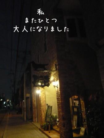 2008-10-03-01.jpg
